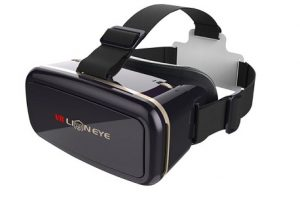 VR Lion Eye