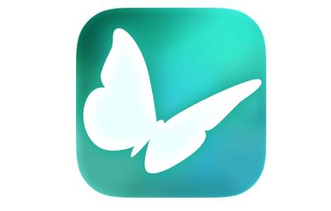 Flutter VR (Google Daydream)