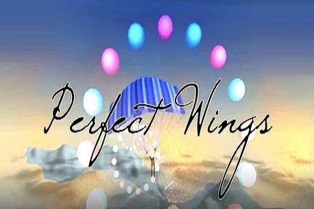 Perfect Wings (Gear VR)