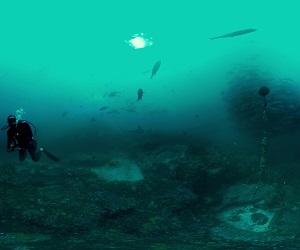 Cocos: Shark Island