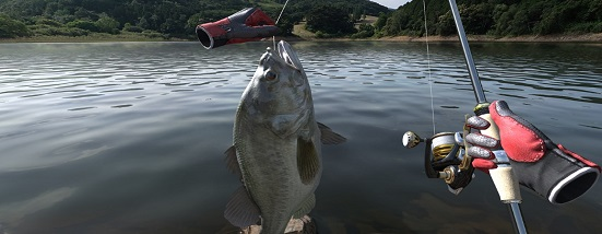 Real VR Fishing (Oculus Go)