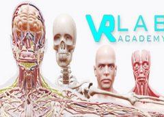 VRLab Academy Anatomy VR (Steam VR)
