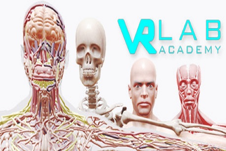 VRLab Academy Anatomy VR (Steam VR)