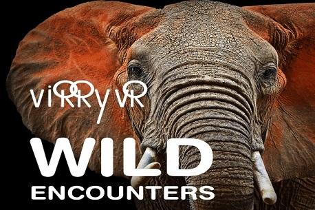Virry VR: Wild Encounters (PSVR)