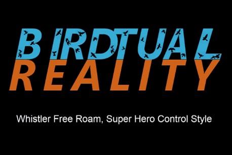 Birdtual Reality (Steam VR)