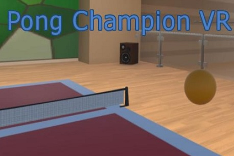 Pong Champion VR (Steam VR)