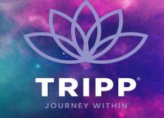 TRIPP (Oculus Quest)