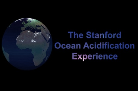 The Stanford Ocean Acidification Experience (Steam VR)
