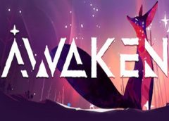 Awaken (Steam VR)