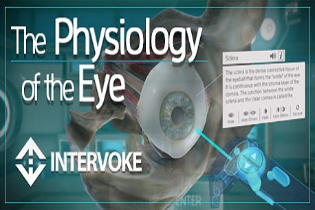 The Physiology of the Eye (Steam VR)