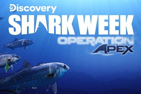 Shark Week: Operation Apex (Steam VR)