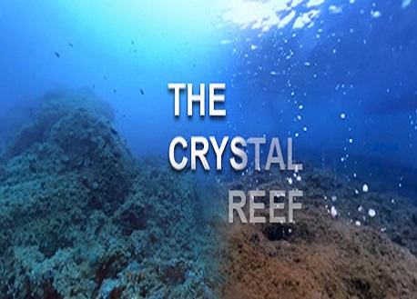 The Crystal Reef (Steam VR)
