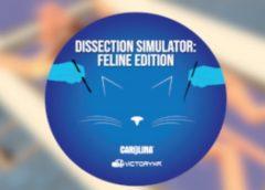 Dissection Simulator: Feline Edition (Steam VR)