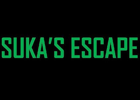 Suka's Escape (Steam VR)