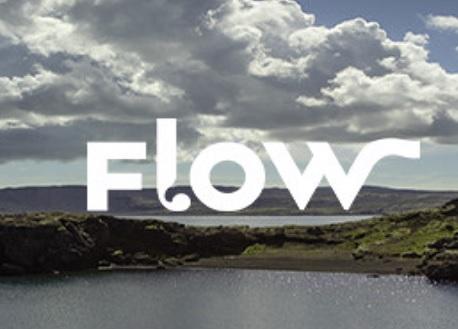 Flow (Steam VR)
