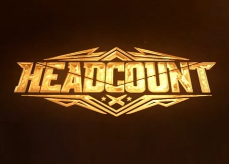 HeadCount (Steam VR)
