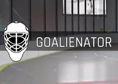 Goalienator (Steam VR)