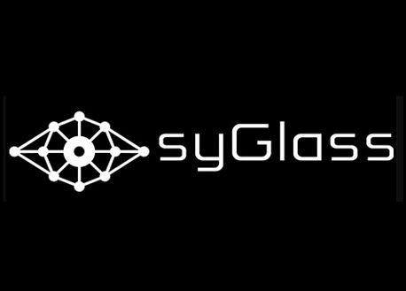 syGlass View (Steam VR)